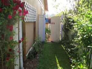 Through the garden gate, Back to Eden