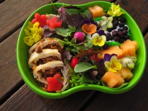 Edible flowers-kale blossoms and johnny jump-ups. Fruit slices cut with star-shaped cutters. I put my boys through school as a florist (part of my duty as the produce girl at a small grocery store in an even smaller town) , making bento scratches a creative itch. Micro greens from the garden and Ray's enchiladas made this bento one of those