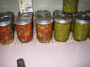 Pickled peppers and green tomato relish. We have never had so many tomatoes that we've started looking for different ways  to use them. The relish is amazing!
