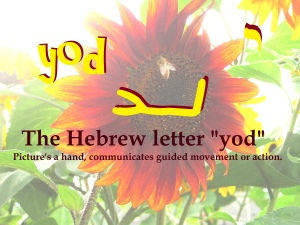 "The Hebrew letter yod is a pictograph of the ""hand"" of the Almighty. It always represents action that is guided by his hidden hand, as if on our shoulder, sometimes propelling us, sometimes encouraging us, always present with us."