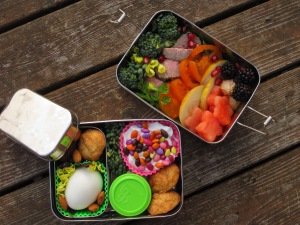That is a lemon cucumber, but the orange tomato and the broccoli are from the plants pictured above. The tiny egg came from one of this years hens.  There are even a few ground cherries from the Toy Box in this Bento. Underneath the steak and tomatoes there is a layer of spicey greens that we grow for fresh winter food. The watermelon and blackberries come from TJ's but we save so much by growing our own food, expensive store fruit does not break us.