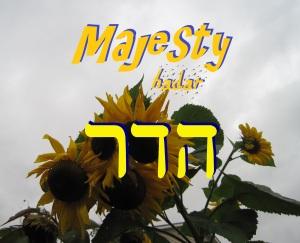 Majesty!
