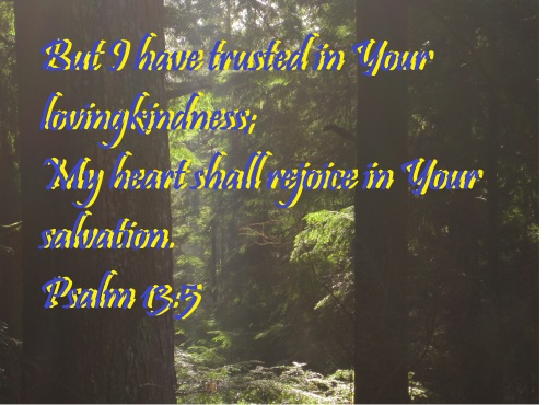 Psalm 13 5 Dec 13, 2014 (1) - Copy
