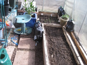 March 7, 2015 (6) Greenhouse