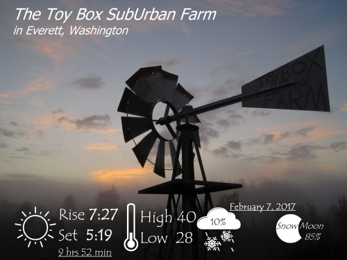 1february-7-2017-weather