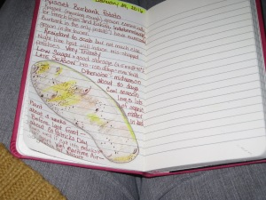 january-24-2016-1-potato-journal