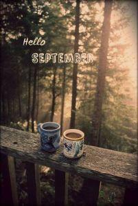 September 1 2017 Par ici et par la...
