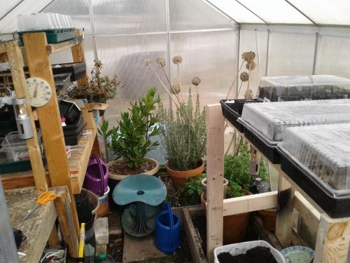 Greenhouse February 23
