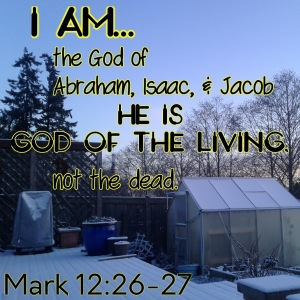 Mark 12 February 23