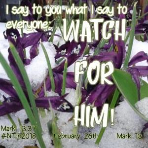 Mark 13 February 26, 2018